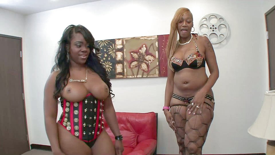 Bbw interracial swappers